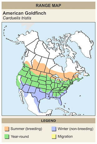 CERange Map for American Goldfinch