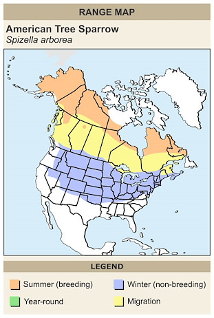 CERange Map for American Tree Sparrow