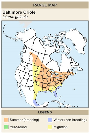 CERange Map for Baltimore Oriole