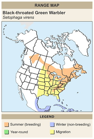 CERange Map for Black-throated Green Warbler