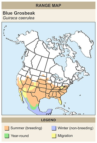 CERange Map for Blue Grosbeak