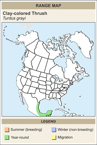 CERange Map for Clay-colored Thrush