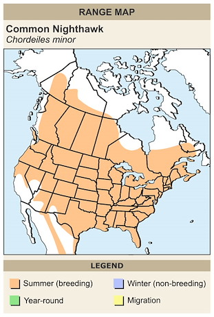 CERange Map for Common Nighthawk