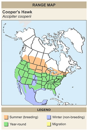 CERange Map for Cooper's Hawk