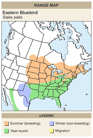 CERange Map for Eastern Bluebird