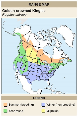 CERange Map for Golden-crowned Kinglet