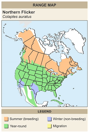 CERange Map for Northern Flicker