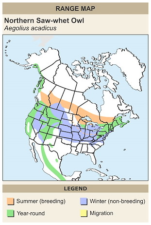 CERange Map for Northern Saw-whet Owl