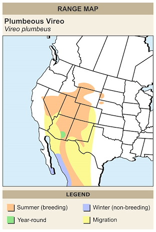 CERange Map for Plumbeous Vireo