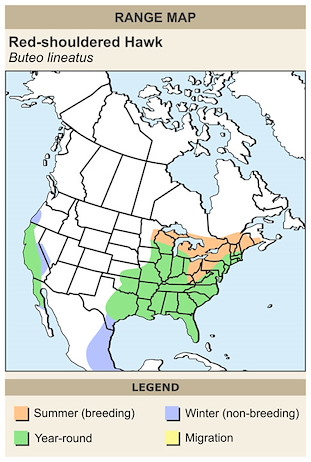 CERange Map for Red-shouldered Hawk