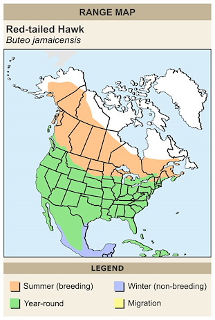 CERange Map for Red-tailed Hawk