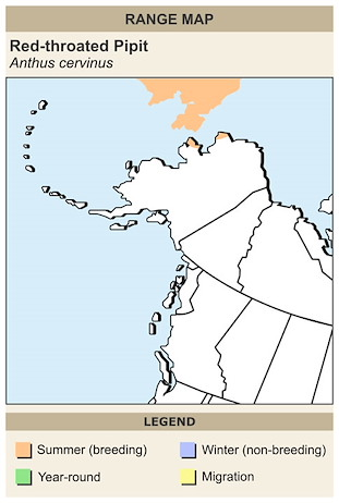 CERange Map for Red-throated Pipit