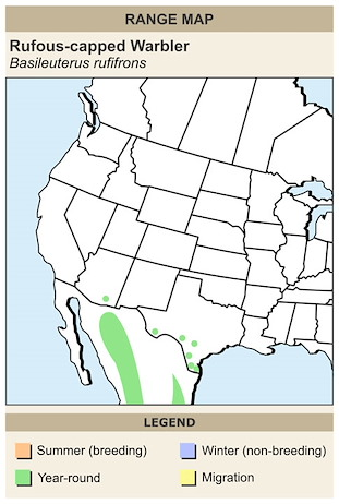 CERange Map for Rufous-capped Warbler