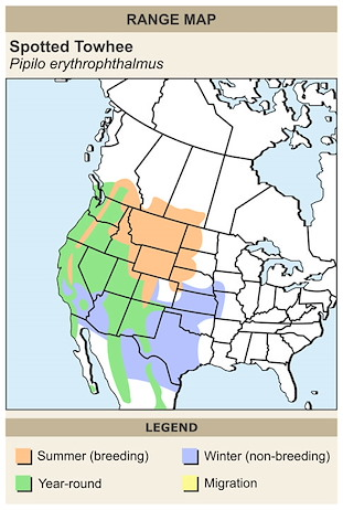 CERange Map for Spotted Towhee