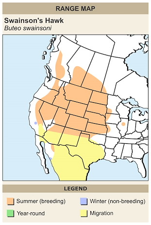 CERange Map for Swainson's Hawk