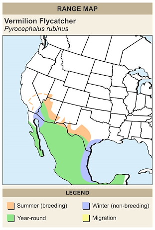 CERange Map for Vermilion Flycatcher
