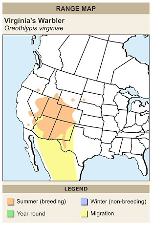 CERange Map for Virginia's Warbler