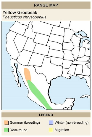 CERange Map for Yellow Grosbeak