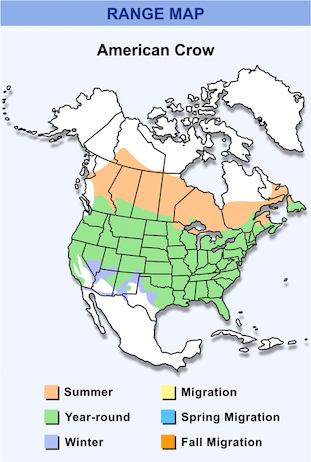 Range Map for American Crow HD