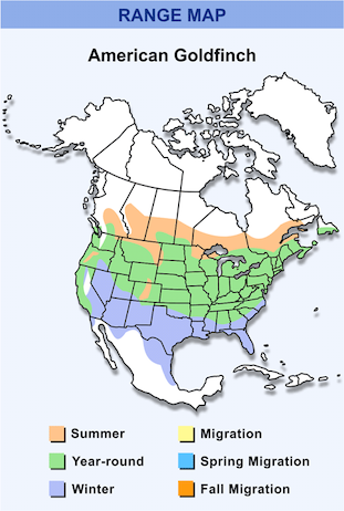 Range Map for American Goldfinch HD