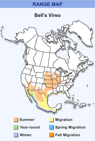 Range Map for Bell's Vireo HD