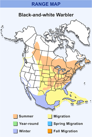 Range Map for Black-and-white Warbler HD