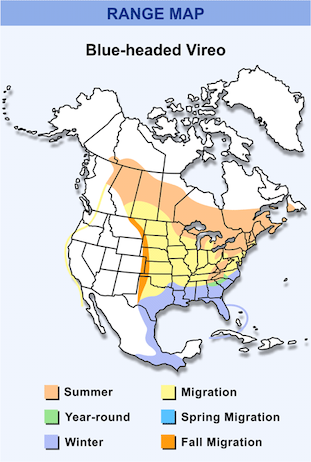 Range Map for Blue-headed Vireo HD