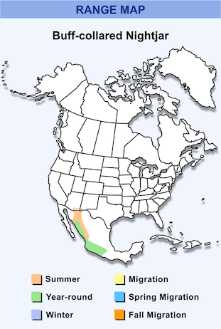 Range Map for Buff-collared Nightjar HD