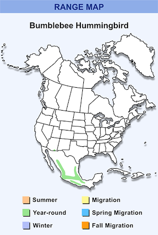 Range Map for Bumblebee Hummingbird.png