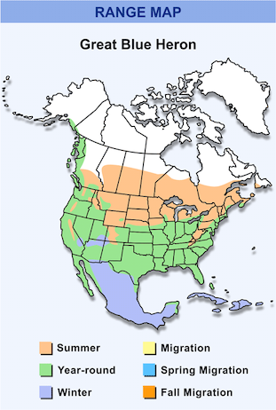 Range Map for Great Blue Heron HD