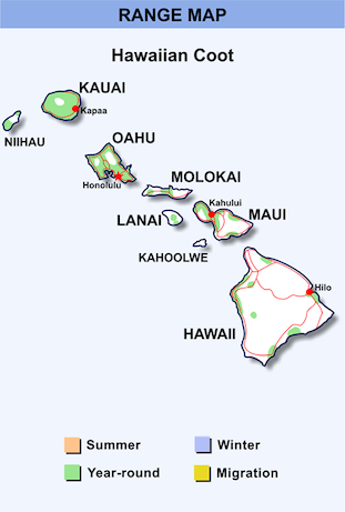 Range Map for Hawaiian Coot HD