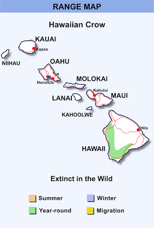 Range Map for Hawaiian Crow HD