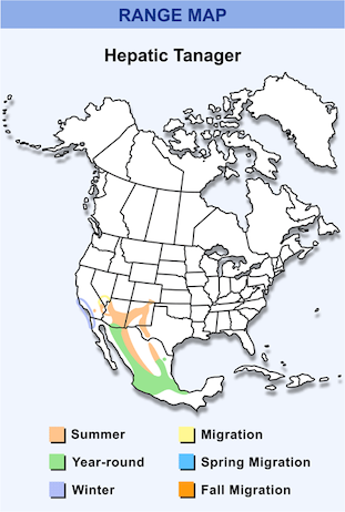 Range Map for Hepatic Tanager HD