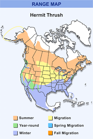Range Map for Hermit Thrush HD