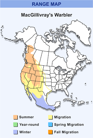 Range Map for MacGillivray's Warbler HD