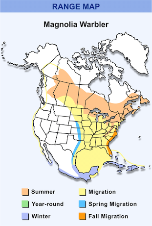 Range Map for Magnolia Warbler HD