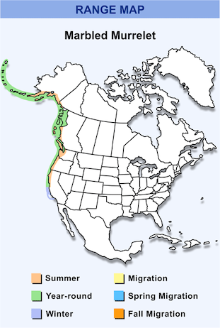 Range Map for Marbled Murrelet HD