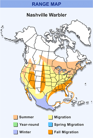 Range Map for Nashville Warbler HD