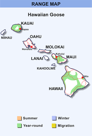 Range Map for Hawaiian Goose HD.png