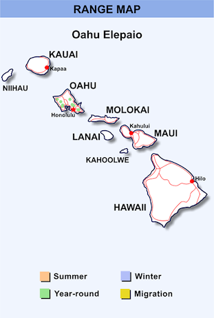 Range Map for Oahu Elepaio HD