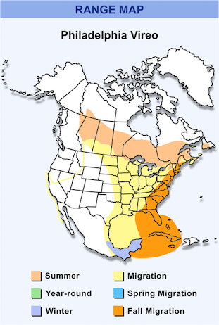 Range Map for Philadelphia Vireo HD