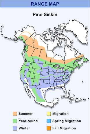 Range Map for Pine Siskin HD