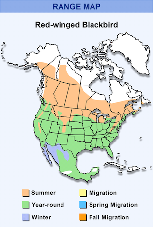 Range Map for Red-winged Blackbird HD