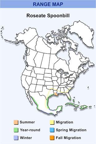 Range Map for Roseate Spoonbill HD