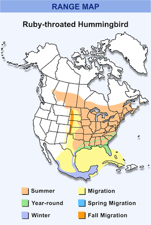 Range Map for Ruby-throated Hummingbird HD