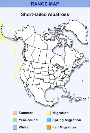 Range Map for Short-tailed Albatross HD