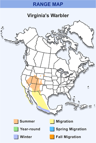 Range Map for Virginia's Warbler HD