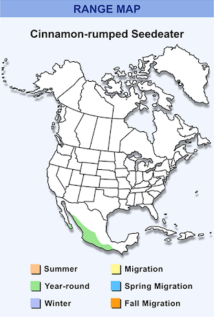 Range Map for White-collared Seedeater HD