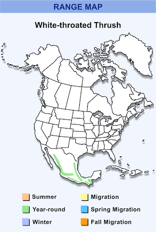Range Map for White-throated Thrush HD