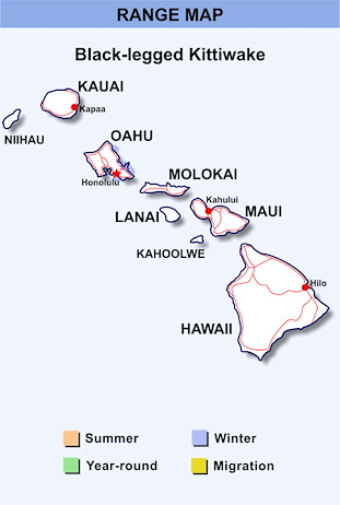 Range Map Hawaii for Black-legged Kittiwake